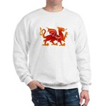 Dragon tattoo Sweatshirt