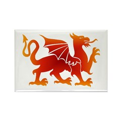 Dragon tattoo Rectangle Magnet (100 pack)