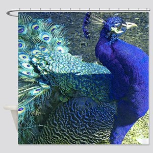 Blue peacock on blue green backgrou Shower Curtain