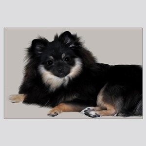 Sable Pomeranian Posters Large Poster