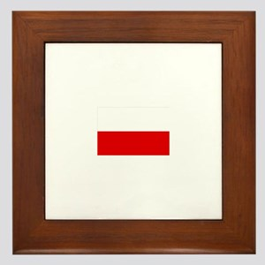 poland flag Framed Tile
