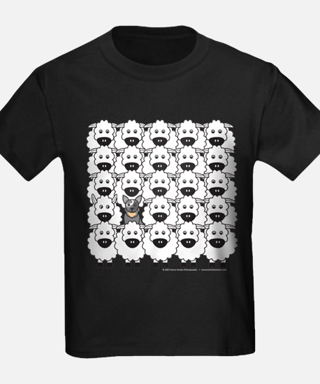 ACD and Sheep T