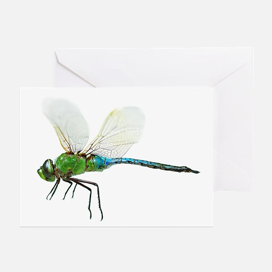 Dragonfly 3 Greeting Cards (6)