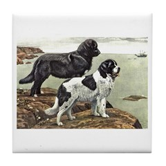 Newfoundland Dog Art Tile Coaster