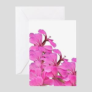 Pink Geraniums Greeting Cards