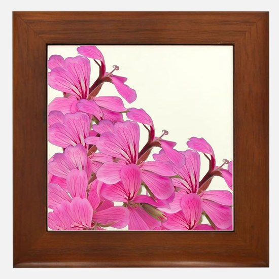 Pink Geraniums Framed Tile