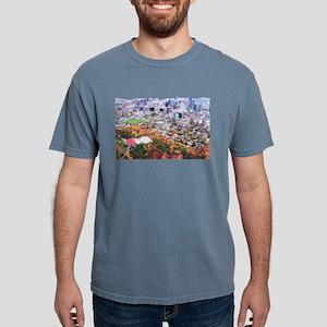 1decoupeseul Mens Comfort Colors Shirt