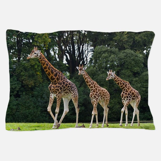 Giraffes family in the wildlife park Pillow Case
