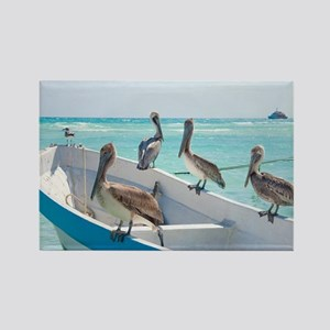 Pelicans At Playa Del Carmen, Mex Rectangle Magnet