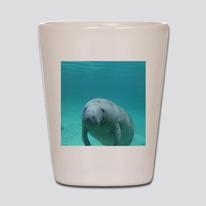Seacow or Manatee Swimming Undereater i Shot Glass