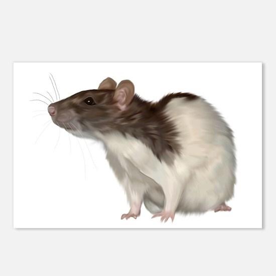 Unique Fancy rat Postcards (Package of 8)