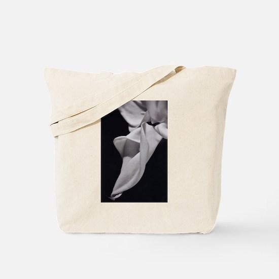 callaGroup camara Tote Bag