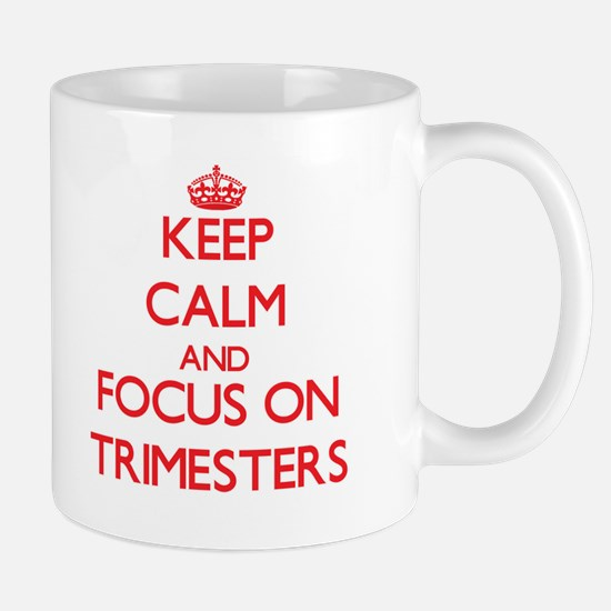 Keep Calm and focus on Trimesters Mugs