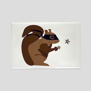 Masked Squirrel Magnets