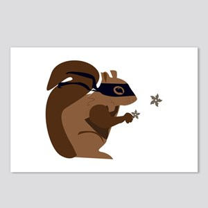 Masked Squirrel Postcards (Package of 8)