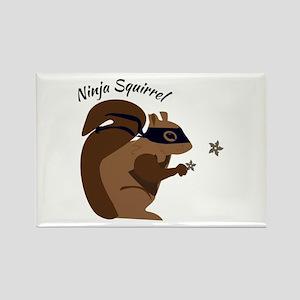 Ninja Squirrel Magnets
