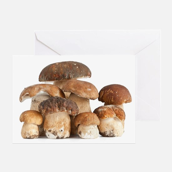 Boletus Edulis mushroom Greeting Card