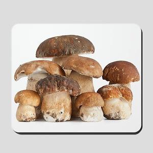 Boletus Edulis mushroom Mousepad