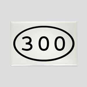 300 Oval Rectangle Magnet