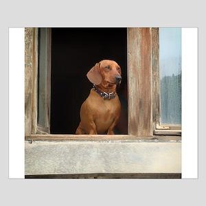 Dachshund Dog Posters