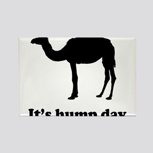 It's hump day Magnets