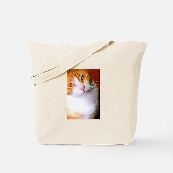 camara playPlease Tote Bag