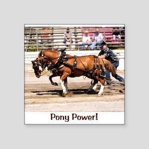 "Welsh Cob Ponies Square Sticker 3"" x 3"""