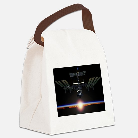 iss Canvas Lunch Bag