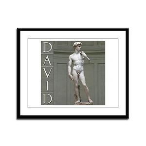 David Framed Panel Print