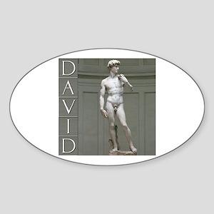 David Oval Sticker