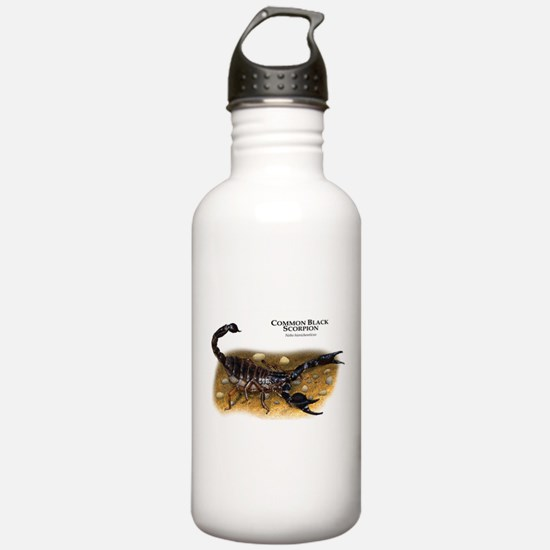 Common Black Scorpion Water Bottle