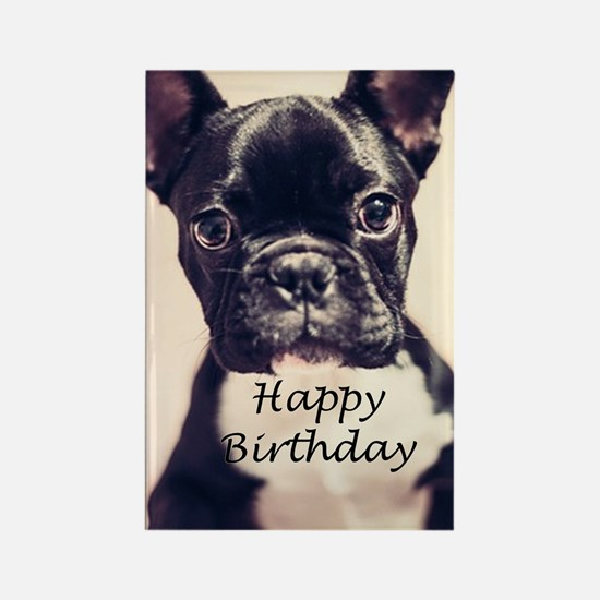 Birthday French Bulldog Rectangle Magnet