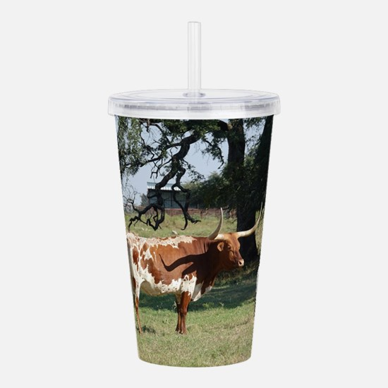 Longhorn Cow and Calf Acrylic Double-wall Tumbler