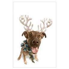 Dog With Antlers Poster
