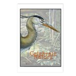 Celebrate Nature Postcards (Package of 8)