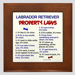 Labrador Retriever Property Laws 3 Framed Tile