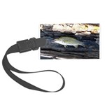 Woody Pittsburgh Smallmouth Luggage Tag