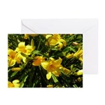 Yellow Lilies Greeting Cards (Pk of 20)
