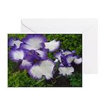 Blue Iris Greeting Cards (Pk of 20)