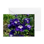 Blue Delphinium Greeting Cards (Pk of 10)