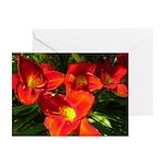 Orange Lilies Greeting Cards (Pk of 10)