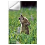 Baby wolf Wall Decals