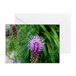 Purple Flowers Greeting Cards (Pk of 10)