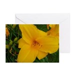 Yellow Lily Greeting Cards (Pk of 10)