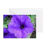 Purple Petunias Greeting Cards (Pk of 20)