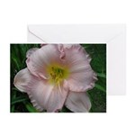 Fancy Pink Lily Greeting Cards (Pk of 10)
