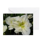 Snowy White Lilies Greeting Cards (Pk of 20)