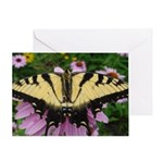 Butterfly Echinacea Greeting Card