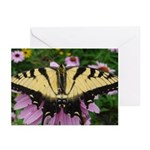 Butterfly Echinacea Greeting Cards (Pk of 10)