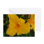 Golden Girl Lilies Greeting Cards (Pk of 10)